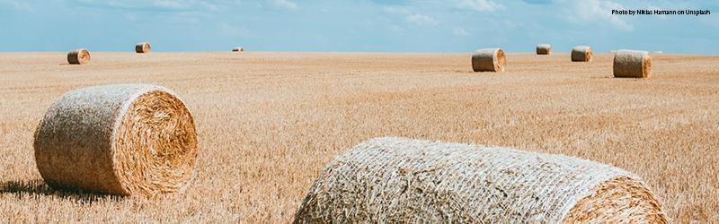 Farm Business Tenancy